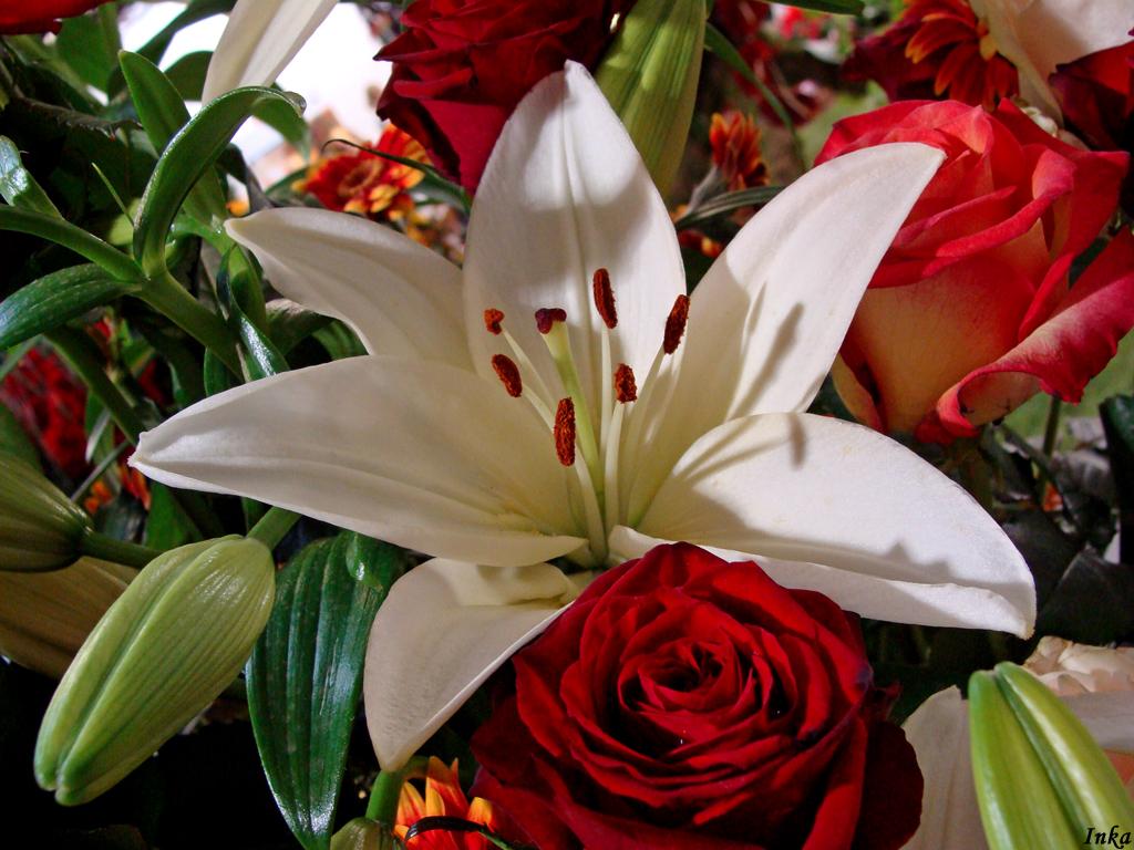Lilie, róże, gerbery